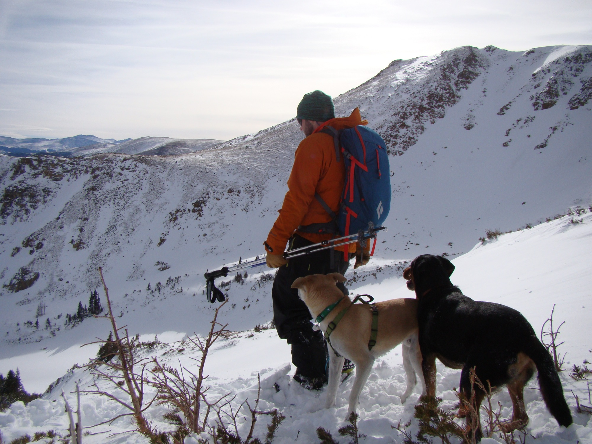 George and the Pups About to Drop Into the South Chutes